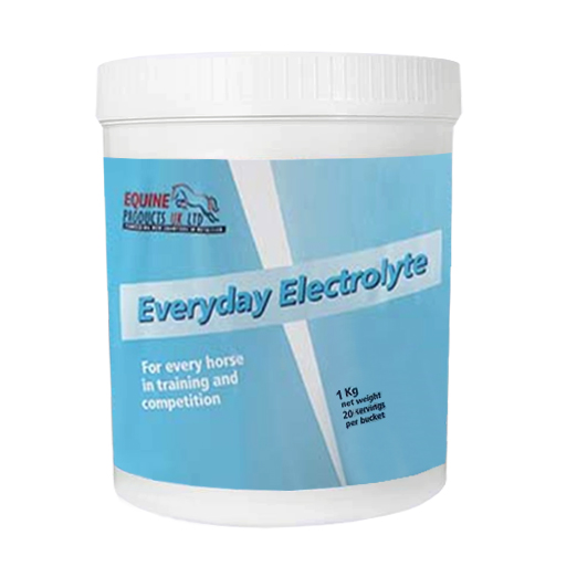 Everyday Electrolyte