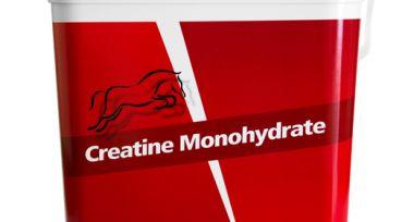 Creatine Monohydrate 2 kg
