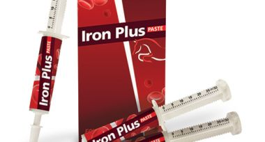 Iron Plus Paste 30 ml